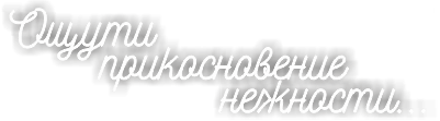 catalog/banners/2017/1/oshuti_prik.png